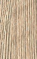 №155 Рифленый дуб